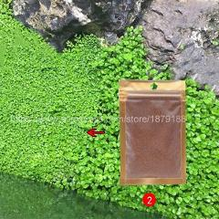 Aquarium Landscape Ornament aquatic  Water Grass  Mini Leaf Live Plant Fish Tank Decoration  Home Graden   B888