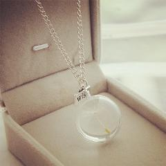 Fashion Dandelion natural Necklace Glass Handmade dried flower silver Pendant necklace sided time travel Jewelry for women
